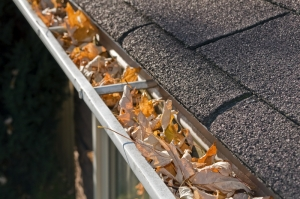 image of leaf clogged gutters.