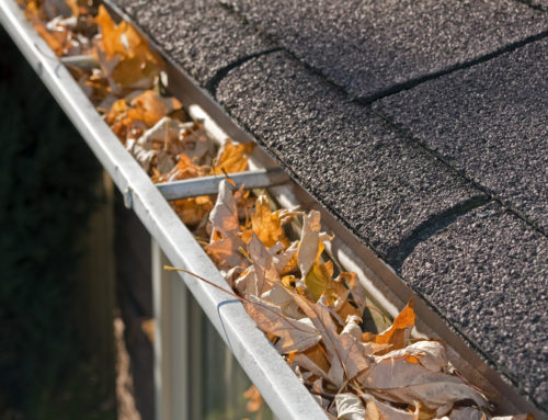 Keep your Gutters Clean and your House Free of Damage