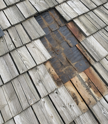 Shake Shingle Repair & Maintenance